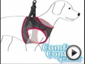 Comfy Control Harness Review - Before You Buy Watch this Comfy